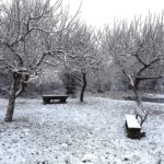 1501_schule-im-winter_59